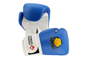 Top 10 Best Kids Boxing Gloves in 2016 Reviews