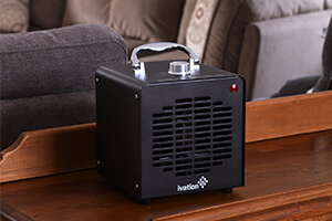 Top 10 Best Home Air Ionizers of 2018 Review