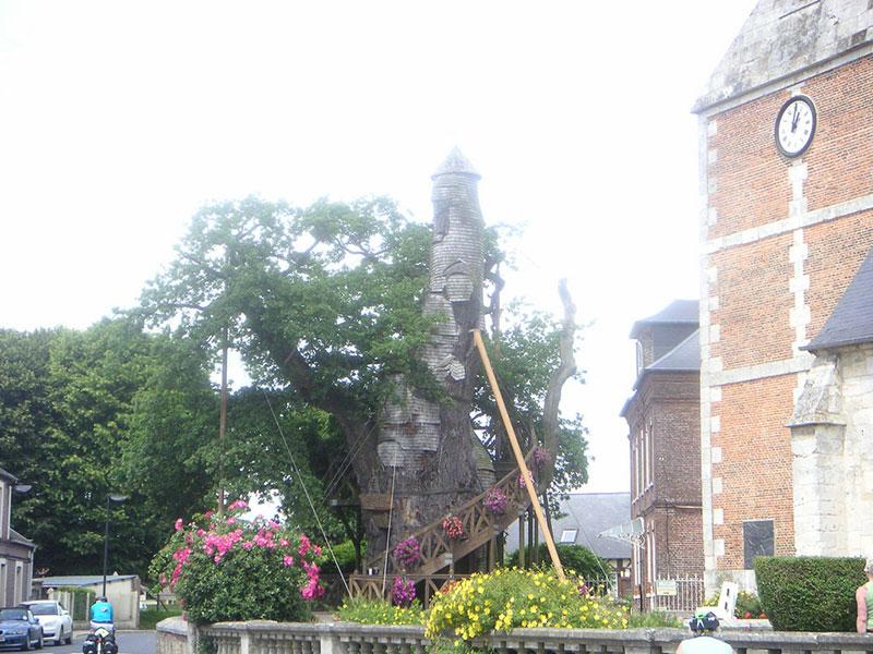 Chapel-Oak of Allouville-Bellefosse